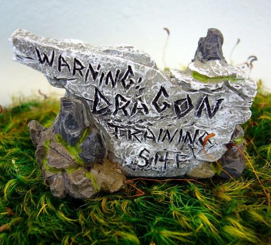 Warning Dragon Training Area