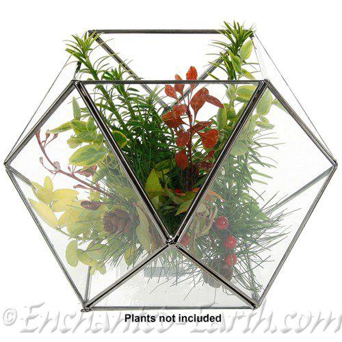 Large Glass Ball Terrarium
